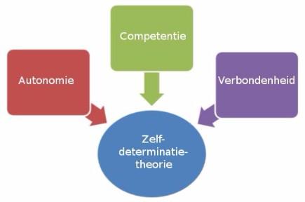 Zelfdeterminatietheorie
